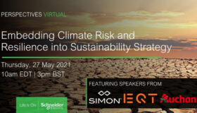 Webinar: Embedding Climate Risk and Resilience into Net Zero Strategy